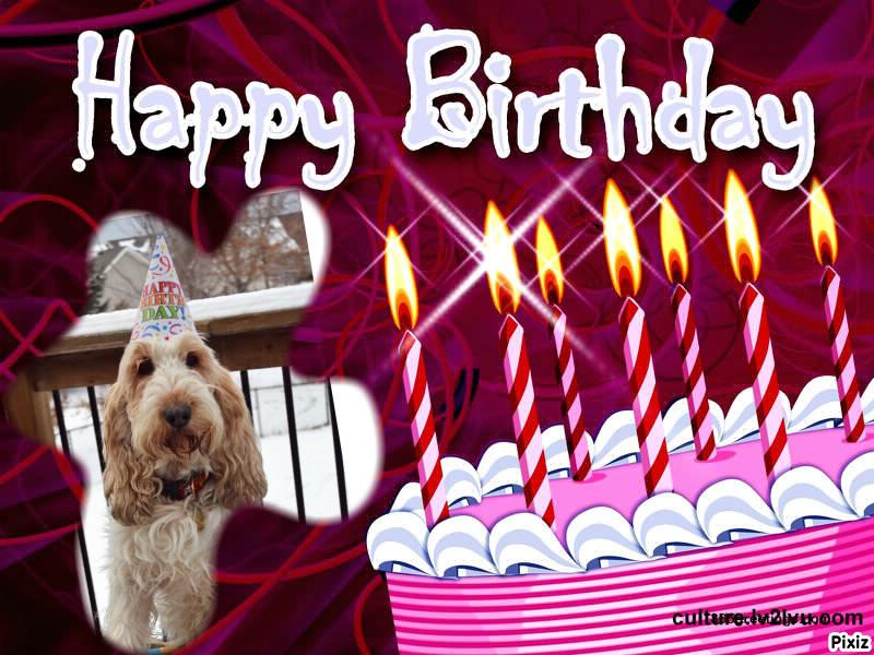 My GBGV Life Birthday Card for Bentley