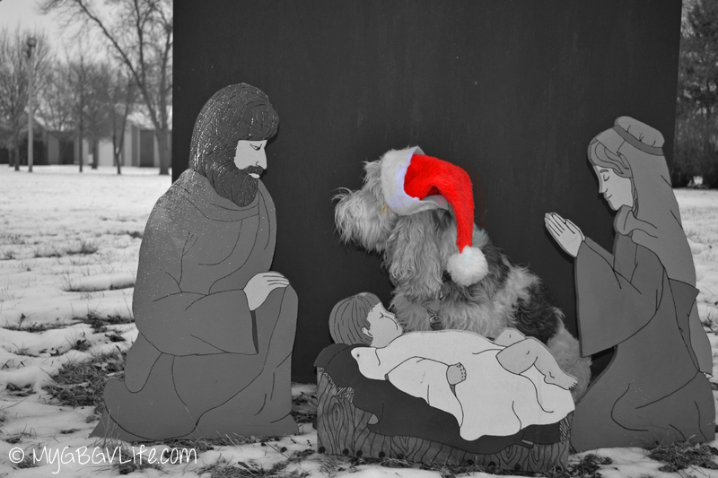 MyGBGV Life Emma talks to Joseph in the manger