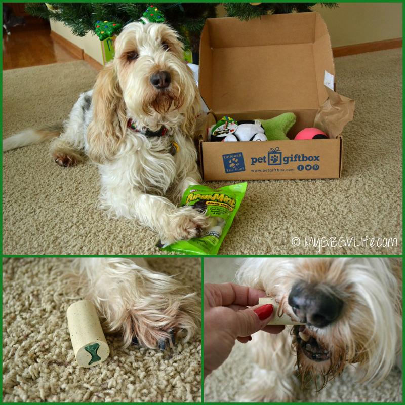 My GBGV Life Pet Gift Box dental chews