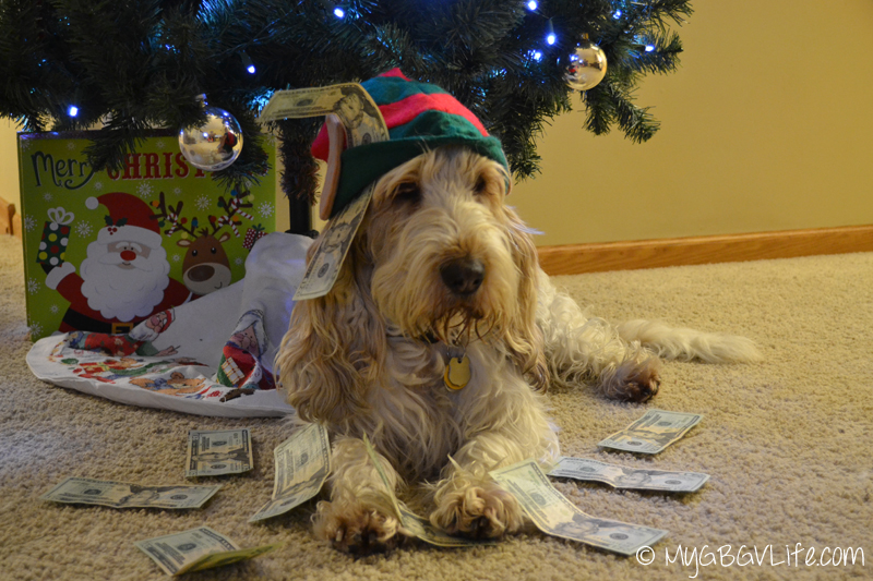 My GBGV Life Cash Elf
