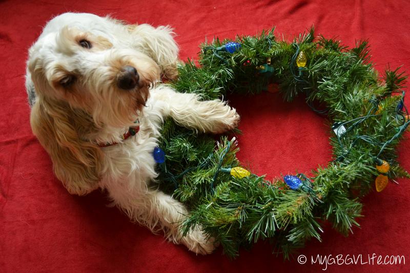 My GBGV Life Emma with her wreath