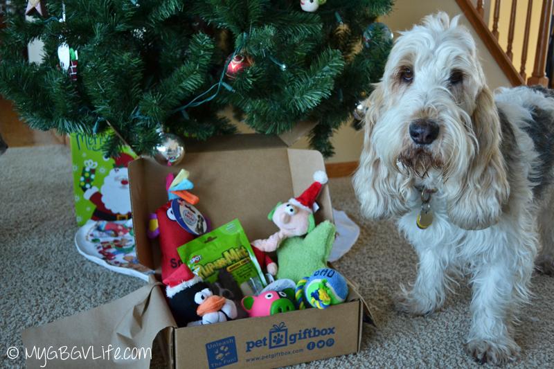 My GBGV Life Pet Gift Box contents