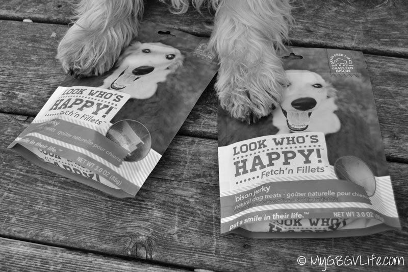 GBGV-Paws-on-bags-bw