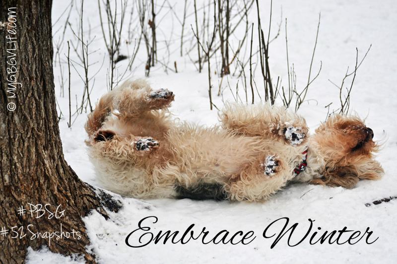 My GBGV Life Embrace Winter #PBSG #52Snapshots of life