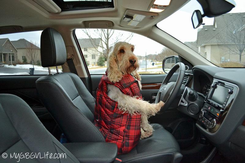 My GBGV Life driving Outlander CUV
