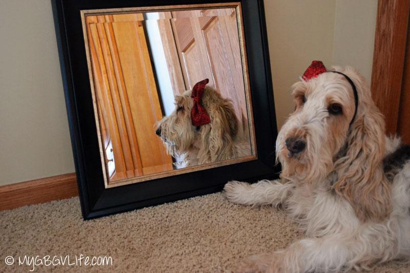 My GBGV Life wall mirror