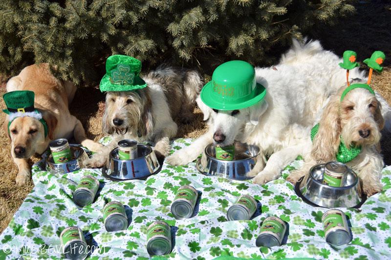My GBGV Life St. Patrick's Day party photo