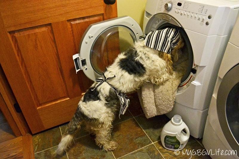 GBGV-loads-washer