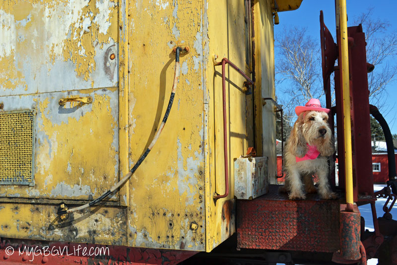 My GBGV Life travel on the caboose