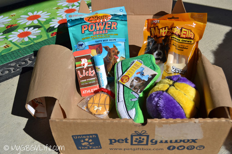 My GBGV Life contents of basketball pet gift box