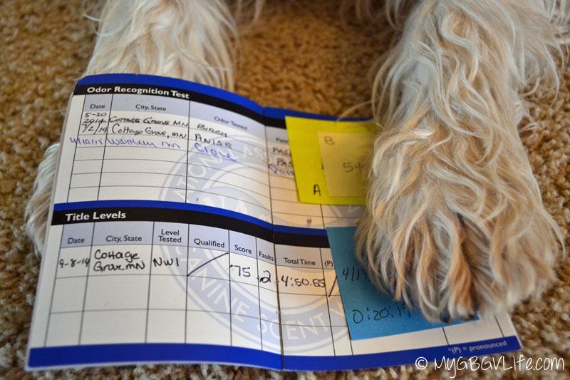 My GBGV Life Emma's ORT scorebook