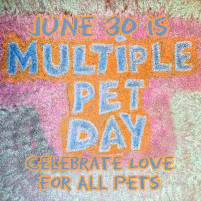 Multiple-Pet-Day-JPEG