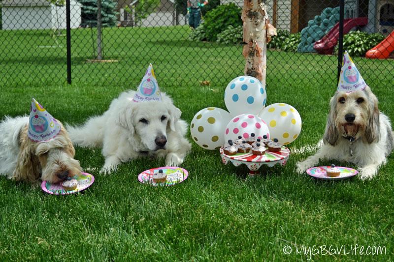 Myy GBGV Life family birthday photo