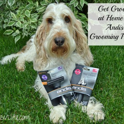 Helpful Home Grooming Tools By Andis #MultiPetMania