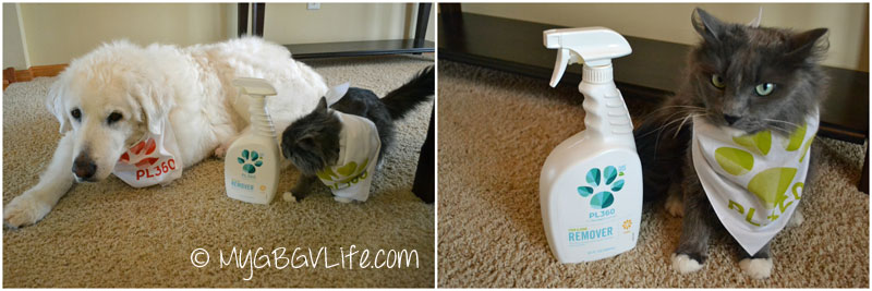 My GBGV Life PL360 stain and odor remover