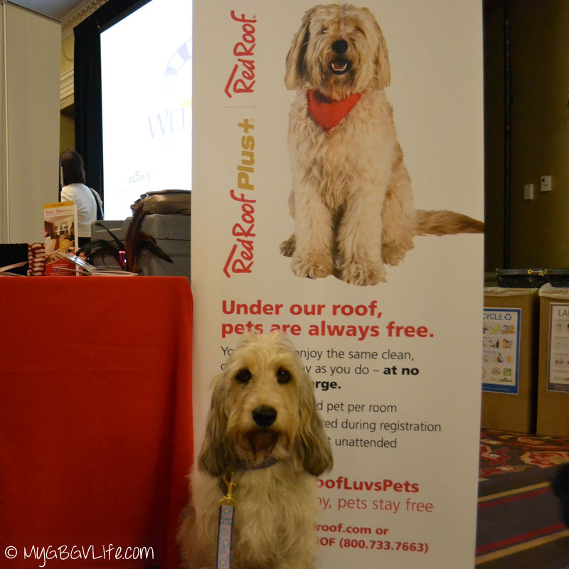 My GBGV Life Bailie with Red Roof Inn Banner