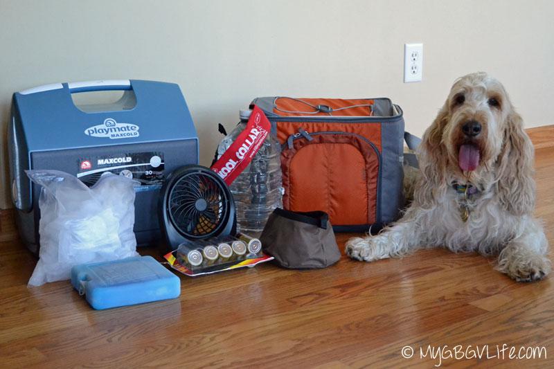 My GBGV Life supplies to keep a dog cool