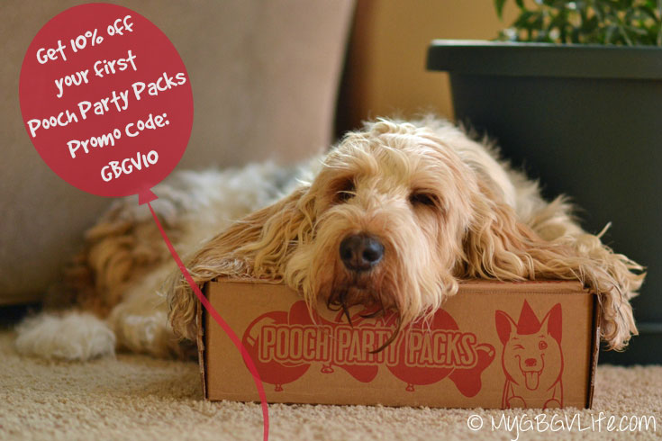 My GBGV Life pooch party packs