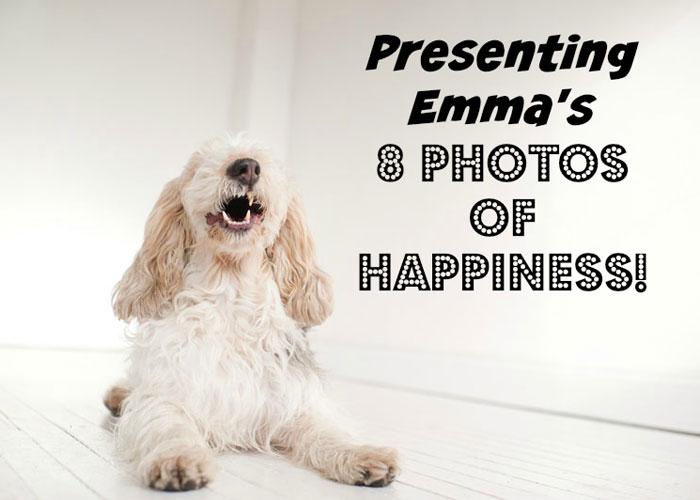 My GBGV Life 8 photos of happiness