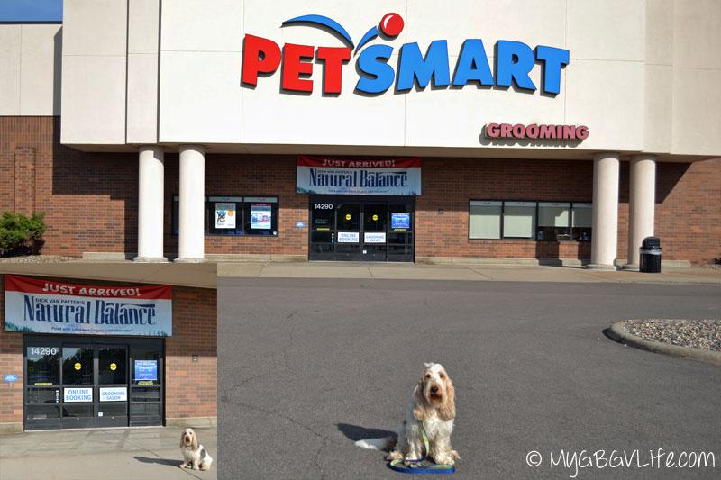 My GBGV Life at my local PetSmart store