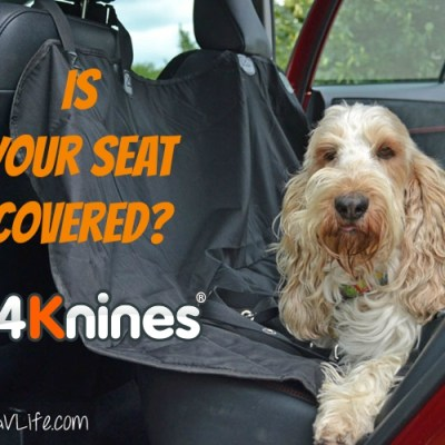 5 Reasons To Cover Your Seat