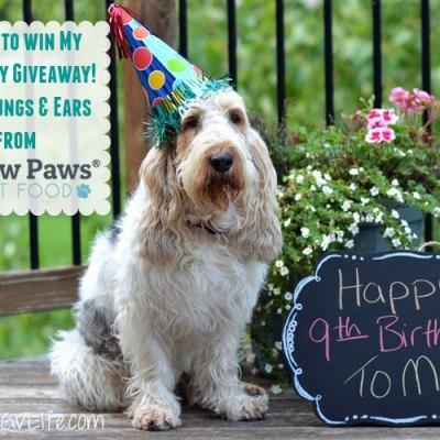 Happy 9th Birthday To Me – A Celebration