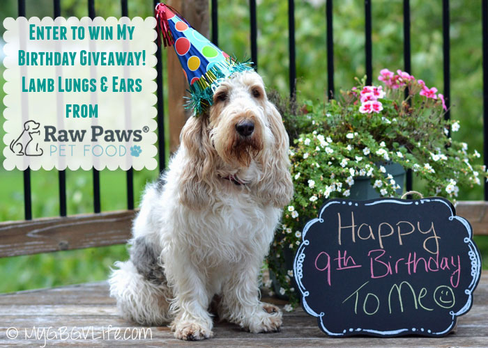 My GBGV Life It's my 9th birthday celebrate and enter my giveaway