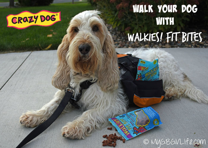 My GBGV LIfe don't walk your dog without walkies