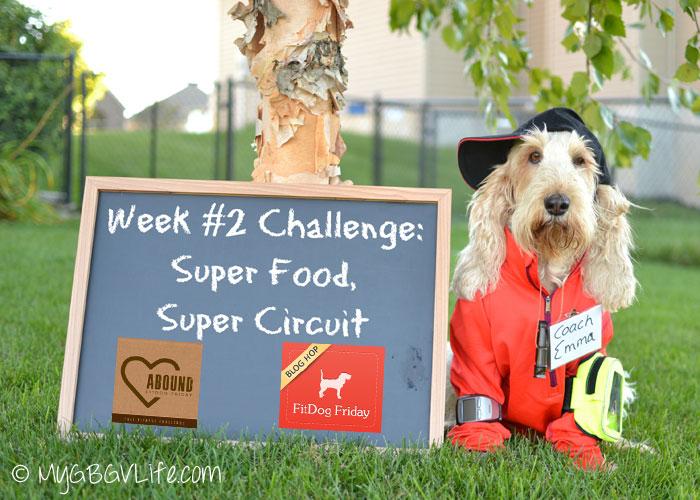 My GBGV Life super food super circuit circuit challenge