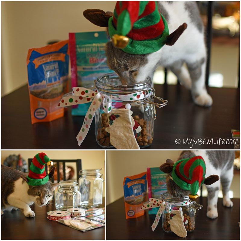 My GBGV Life Easy #DIY Holiday Treat Jars #Natural Balance #sponsored