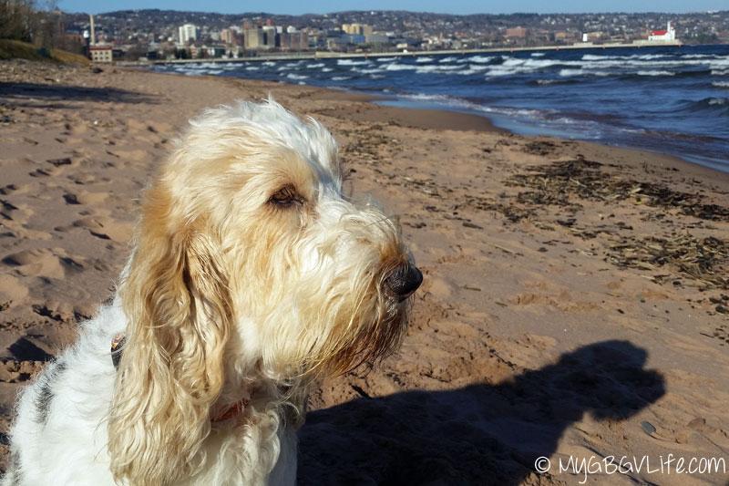 My GBGV Life me and my shadow on the beach
