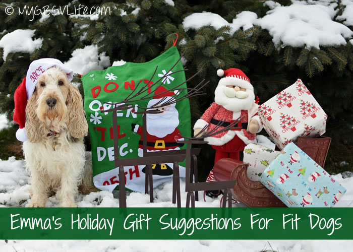 My GBGV Life Emma's Top 10 Recommendations for Fit Dog Gifts