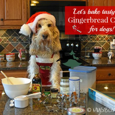 Gingerbread Cookies For Dogs – Easy and Yummy!