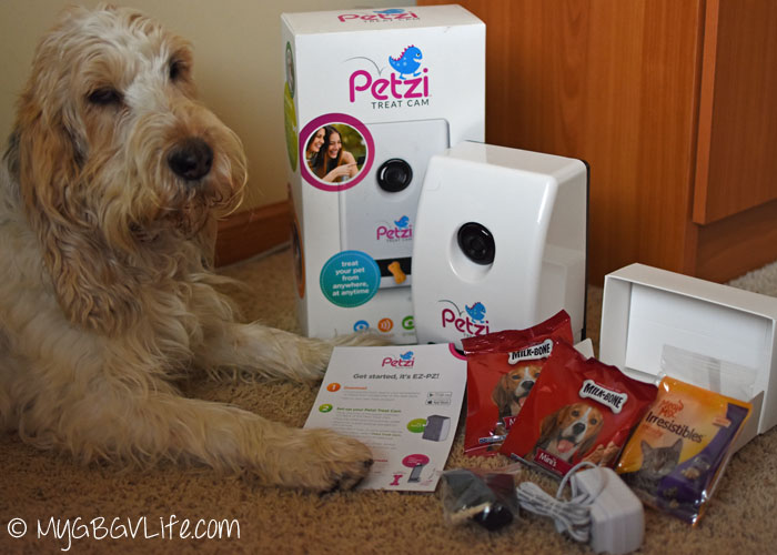 My GBGV Life with Petzi Treat Cam contents