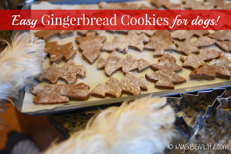 My GBGV Life gingerbread cookies for dogs are ready to bake
