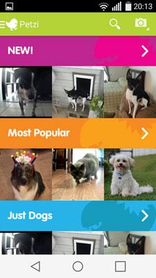 My GBGV Life Petzi App screen shot