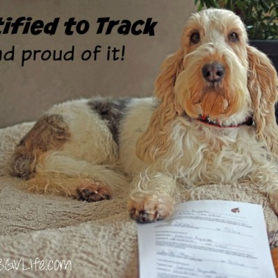Certified To Track And Proud Of It