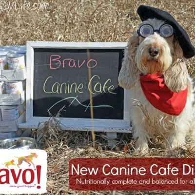 Canine Cafe Dinners – Healthy Meals For Dogs Of All Ages And Breeds