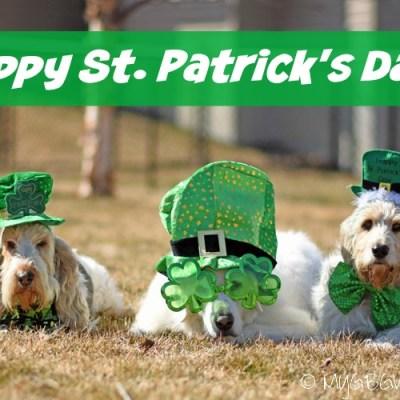St. Patrick's Day Cheer