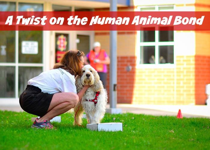 My GBGV Life A Twist On The Human Animal Bond