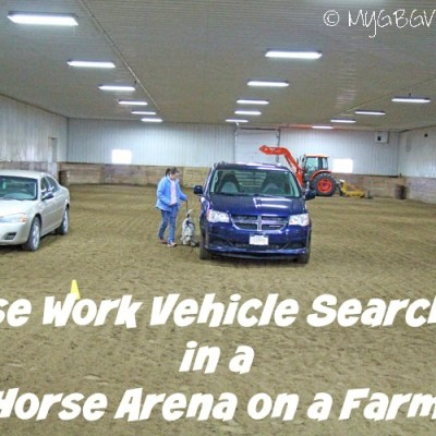 Nose Work Vehicle Searches In A Horse Arena
