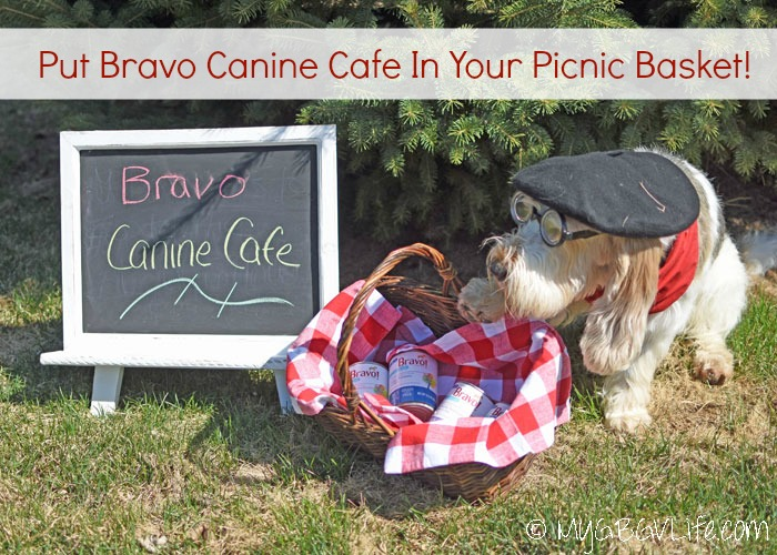My GBGV Life Fill Your Picnic Basket with Bravo Canine Cafe