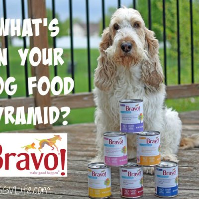 What's In Your Dog Food Pyramid? Bravo Canine Cafe Dinners