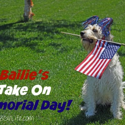 Bailie's Take On Memorial Day