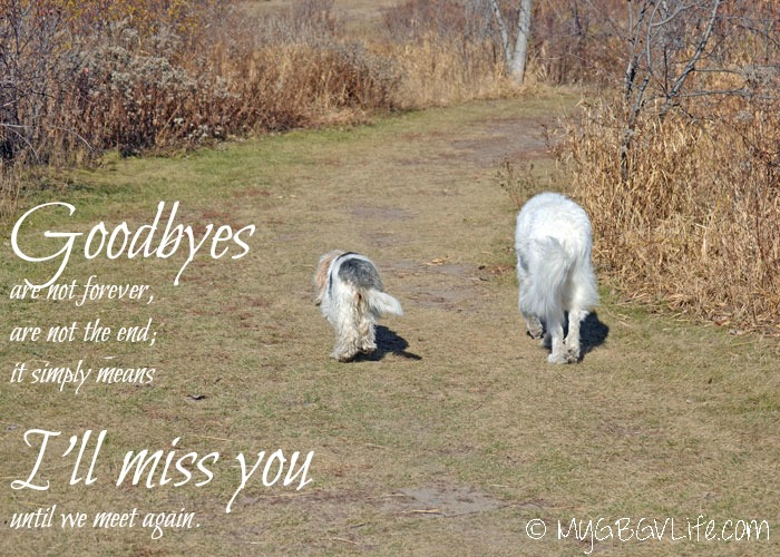 My GBGV Life A Birthday Farewell To My Big Sister Katie