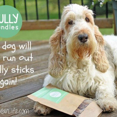 Bully Bundles – Never Run Out Of Bully Sticks Again!