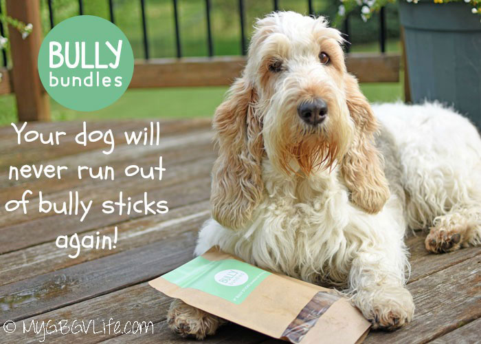 My GBGV Life Bully Bundles - Never Run Out Of Bully Sticks Again!