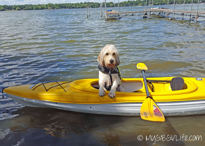 My GBGV Life 7 Dog Safety Tips At The Lake