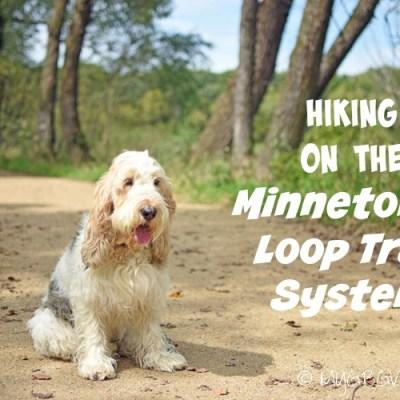 The Minnetonka Loop Trail System