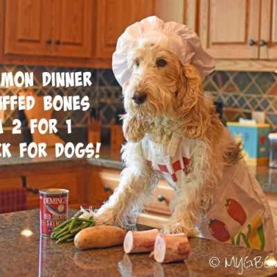 Salmon Dinner Stuffed Bones – A 2 For 1 Snack For Dogs